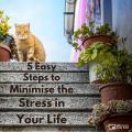 5 Easy Steps To Minimise The Stress In Your Life 4