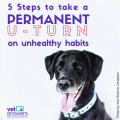 5 Steps To Take A Permanent U Turn On Unhealthy Habits Red