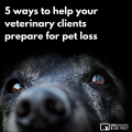 5 Ways To Help Your Veterinary Clients Prepare For Pet Loss