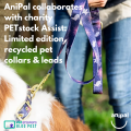 Anipal Collaborates With Charity Petstock Assist Limited Edition Recycledpet Collars Leads