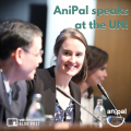Anipal Speaks At The Un 1