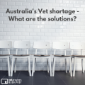 Australias Vet Shortage What Are The Solutions