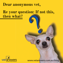 Dear Anonymous Vet Re Your Question If Not This Then What