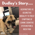 Dudley's Case Study - Acupuncture Case Study