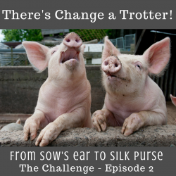 From Sows Ear To Silk Purse Episode 2 Theres Change A Trotter