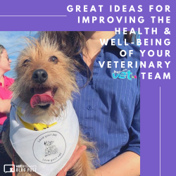 Great Ideas For Improving The Health And Well Being Of Your Veterinary Team Red