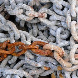 How Many Broken Links Are On Your Veterinary Practice Website 2