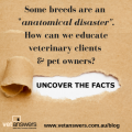 How should we educate veterinary clients & pet owners that some breeds are anatomical disasters?