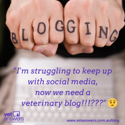 Im Struggling To Keep Up With Social Media Now We Need A Veterinary Blog V3 Red