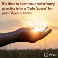 Its Time To Turn Your Veterinary Practice Into A Safe Space For Your Your Team