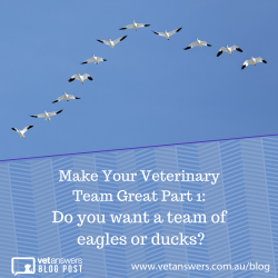 Make Your Veterinary Team Great Part 1 Do You Want A Team Of Eagles Or Ducks Red