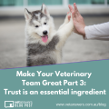 Make Your Veterinary Team Great Part 3 Trust Is An Essential Ingredient 2