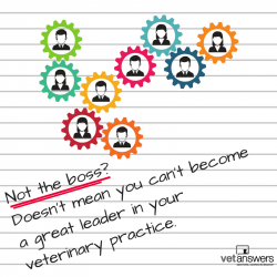 Not The Boss Doesnt Mean You Cant Become A Great Leader In Your Veterinary Practice
