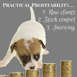 Practical Profitability For Your Veterinary Team V2