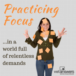 Practicing Focus In A World Full Of Relentless Demands