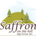 Safron On The Hill Logo 2 1
