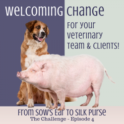 Sows Ear To Silk Purse Episode 4 Accepting Change 4