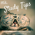 Study Tips For Veterinary Students V2