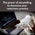 The Power Of Storytelling To Showcase Your Veterinary Practice