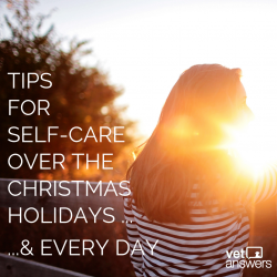 Tips For Self Care Over The Christmas Holidays Every Other Day