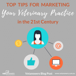 Top Tips For Marketing Your Veterinary Practice In The 21st Century