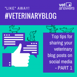 Top Tips For Sharing Your Veterianry Blog On Social Media Part 1