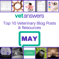 Vetanswers Top 10 Veterinary Blog Posts For May