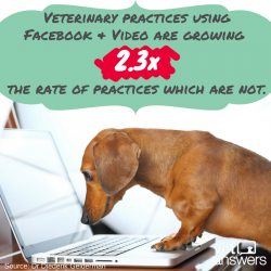 Veterinary Practices You Need To Use Video And You Need To Use Facebook 3