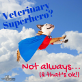 Veterinary Superhero Not Always And Thats Ok 500 X 500
