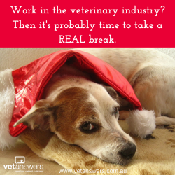 Work In The Veterinary Industry Then Its Probably Time For A Real Break Red
